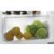 Whirlpool ARG 9070 A+ Tafelmodel koelkast - Inbouw - 54cm