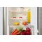 montuojamas šaldytuvas ARG 760/A+